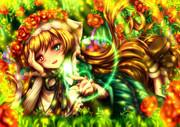 Die Prinzessin einer kleinen Rose
