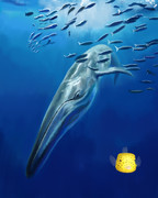 模写練習 クジラ