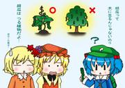 木になる胡瓜