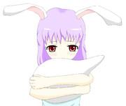 R.N「恋するウサギ」ちゃん