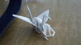 体育の授業で絶対いる一羽の鶴 ~体育座り~