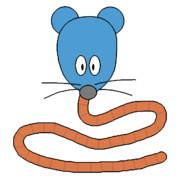 ネズミミズ