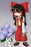 そろそろ梅雨ですね。
