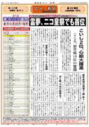 文々。新聞第33号-1面(東方人気投票結果・特集 -キャラクター部門-)