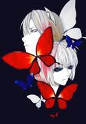 たくまさとし 蝶 【弾いてみた】を【描いてみた】