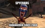 Spycrabs