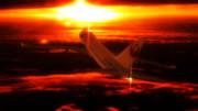 SKY CRUISER ~空飛ぶ客船~  ~JAL B747-400 リペイント~