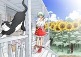 夏でも猫が好き