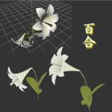 【3Dモデル】百合【配布あり】