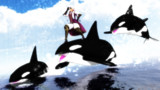 四国の覇者と海の覇者2