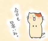 ネコさんから一言(夏バージョン)