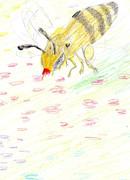 落書き ミツバチ