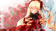 紅薔薇の眠り