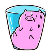 飲むコラーゲン