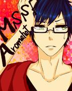 mssp☆aromahot