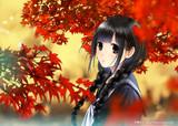 『春夏秋冬、黒髪セーラー服少女』