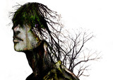私は木になりたい