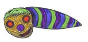 奇妙な生物-21(カラー版)