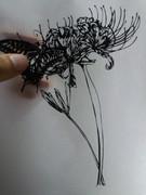 【切り絵】揚羽蝶と彼岸花