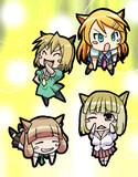 金髪の猫さんたち