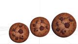 モデル配布 例のクッキー