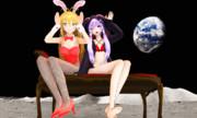 月にウサギを二羽発見
