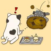 正坐猫とクッキー