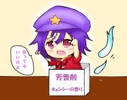 芳香剤(買ってもいいのよ!)
