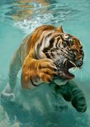 虎がじゃぼん