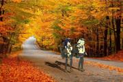 【秋・少女】紅葉の海で【両義】