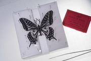【切り絵】切ってみま蝶でナミアゲハ