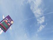 ゆかりさんと飛行機雲