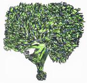 アフロブロッコリー
