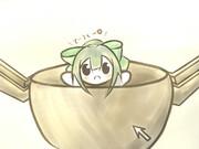 鍋に入れてみました