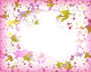 桜フレーム透過PNG