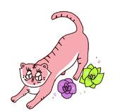 ピンクの虎