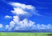 フリー素材――草原と入道雲