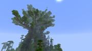 制作中の世界樹 その3