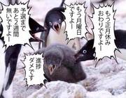 【第12回MMD杯】 杯運営からのお知らせ