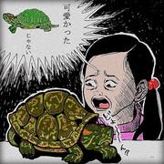 ミドリガメ輸入も飼育も禁止!?