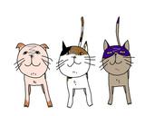 三匹のネコ