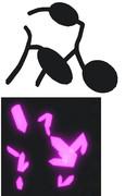 【MMD】汎用洞窟