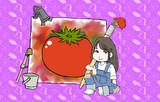 放課後トマトタイム