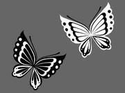 和風の蝶_ver1.1
