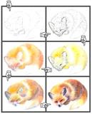 メイキング【寝狐】