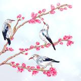 桃の枝花とギンムクドリ