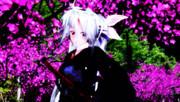 桃の華にて(銀次郎誕生祭2014)