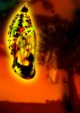 オオゴマダラの蛹ちゃん
