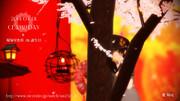 祝!CLAMPの日★【CLAMP_MMD】昴流くんと北都ちゃんに凛として咲く花の如く舞って貰った