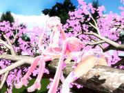 でも桜の木って毛虫でいっぱいよね